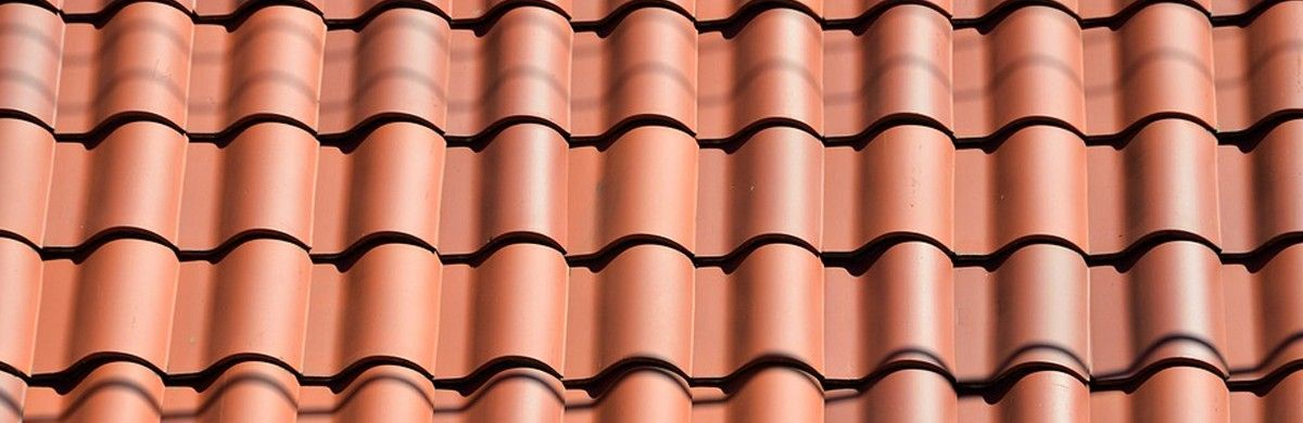 5 Tips To Keep Your Roof in Great Shape